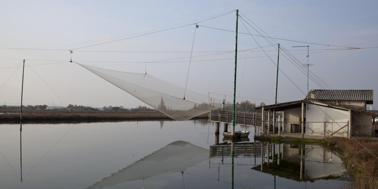 Architetture spontanee delle paludi