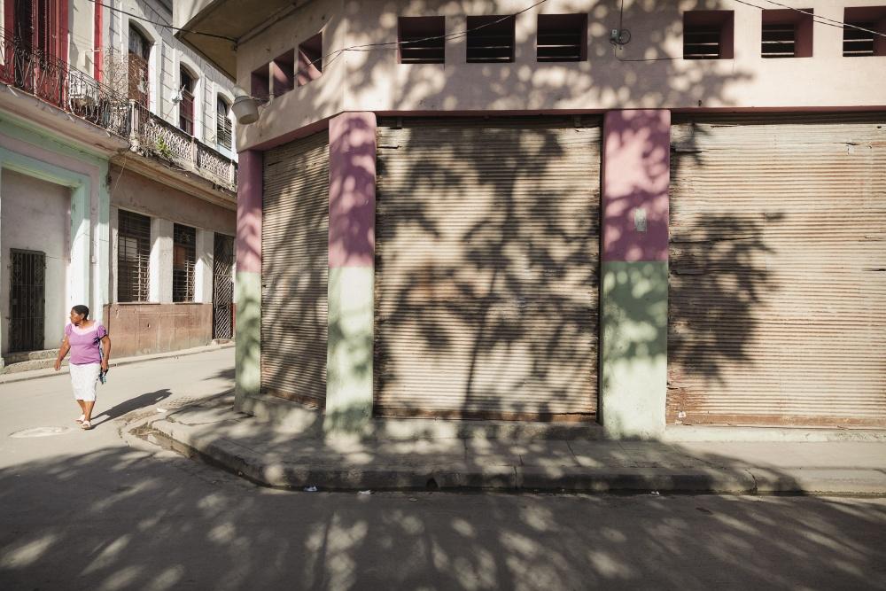 © Donatella Arione - donatellarione.com